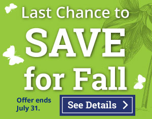 Last Chance to Save for Fall on Calvert Homeschool